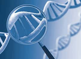 A graphic shows a magnifying glass over a DNA strand
