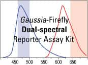 Pierce Gaussia-Firefly Luciferase Dual Reporter Assay Kit