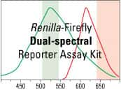 Pierce Renilla-Firefly Dual Luciferase Reporter Assay Kit