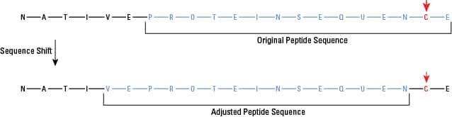 Graphical representation of shifting the peptide sequence to avoid unfavorable amino acids