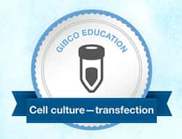 Cell Culture Transfection badge