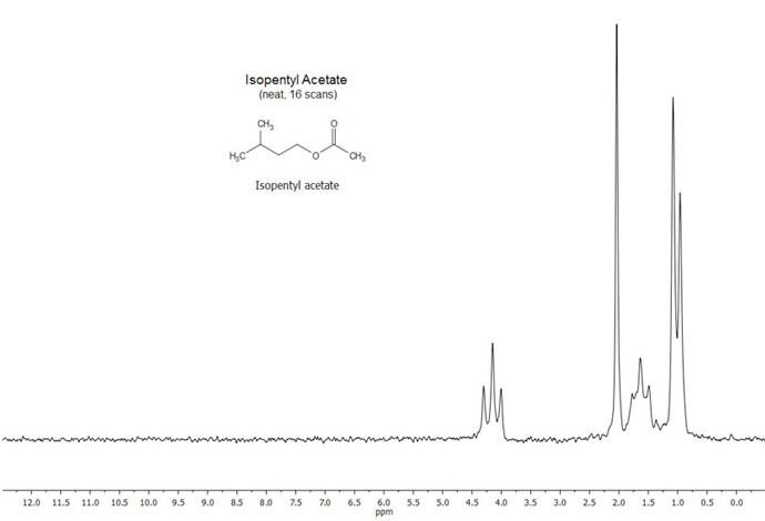 isopentyl acetate lab