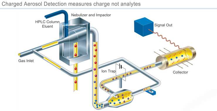 Charged Aerosol Detection for Liquid Chromatography | Thermo