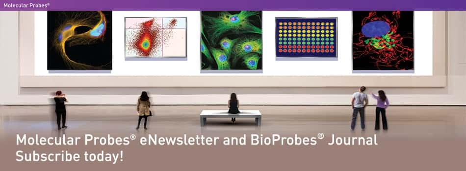 Subscribe to BioProbes® Journal and ProbesOnline™ and BioPath™ E-newsletters