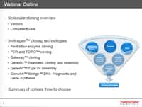 Cloning technologies: Complete solutions from Thermo Fisher Scientific