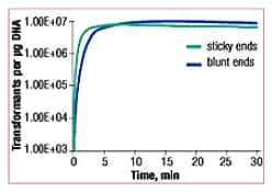 Ligation of sticky- and blunt-end DNA fragments with the Rapid DNA Ligation Kit