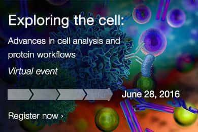 Exploring the cell: Advances in cell analysis and protein workflows