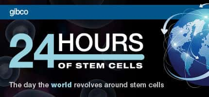 24 hours of stem cells, the day the world revolves around stem cells