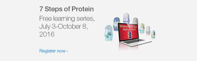 7 steps of protein, free learning series