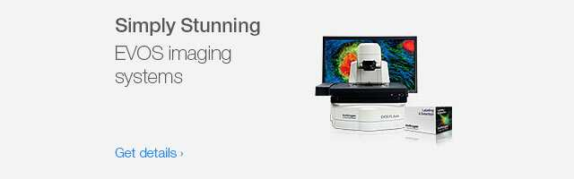 Simply stunning: EVOS imaging systems