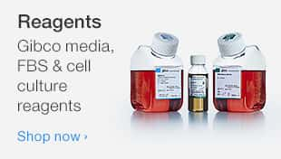 Reagents, Gibco media, FBS and cell culture reagents