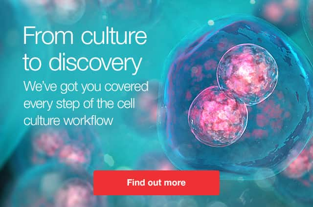 From cell culture to discovery