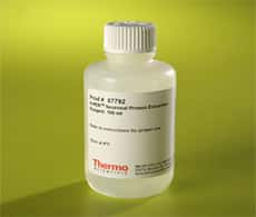Neuronal Protein Extraction Reagent