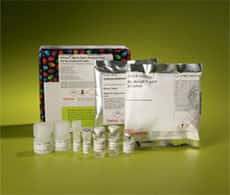 Pierce Mass Spec Sample Prep Kit for Cultured Cells
