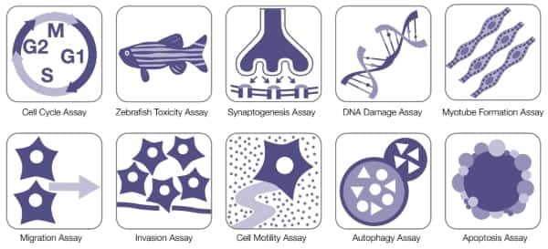 examples of the icons used in the software that the user can select to run various assays including cell cycle, zebrafish toxicity, apoptosis, and DNA damage