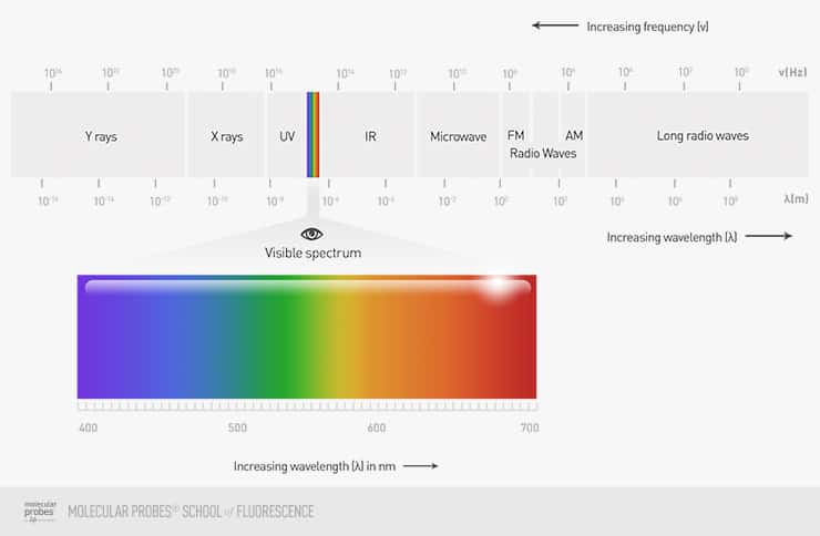 diagram showing the colors of visible light and how they fit into the electromagnetic spectrum