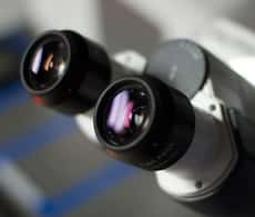 photograph of a microscope showing eyepieces