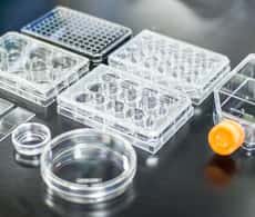photograph showing 8 different types of cell culture vessels