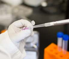 a gloved scientist's hand holding a microcentrifuge tube containing pink-colored liquid that is being withdrawn using a pipette