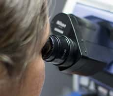 Photograph of scientist looking down a microscope ocular.