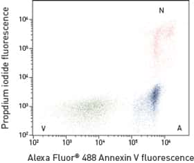 flow cytometry scatter plot showing three populations: viable, apoptotic, and necrotic