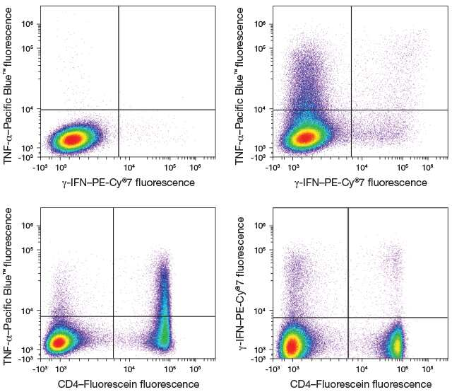 four different flow cytometry scatter plots showing various populations distinguishable using TNF-a, IFN, and CD4 markers