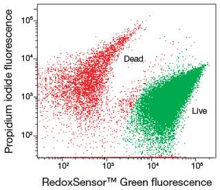 Bacterial Viability And Vitality Assays For Flow Cytometry