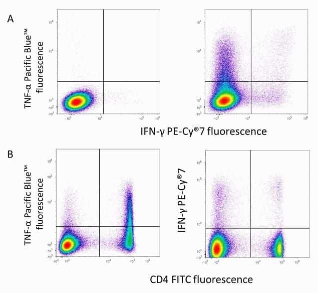Flow cytometry analysis of IFN-gamma on C57BL/6 mouse splenocytes