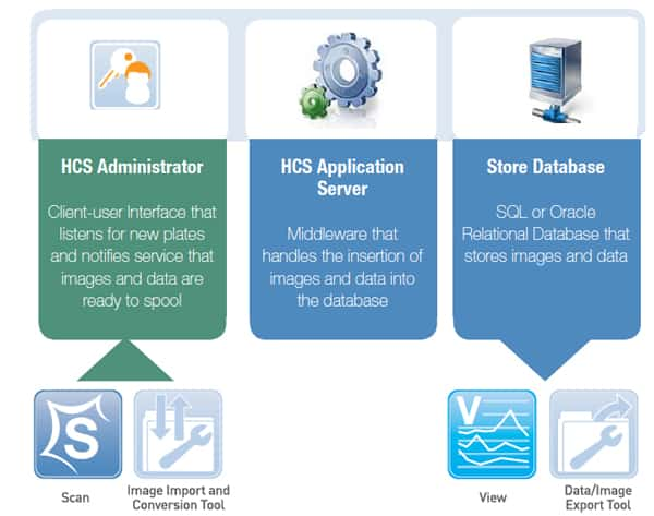 Workflow diagram showing how data moves from an HCS Admininstrator to an HCS Application Server to the Store Database. Through this workflow, new plate images and plate data are are accepted into the system, inserted into the database, and stored.
