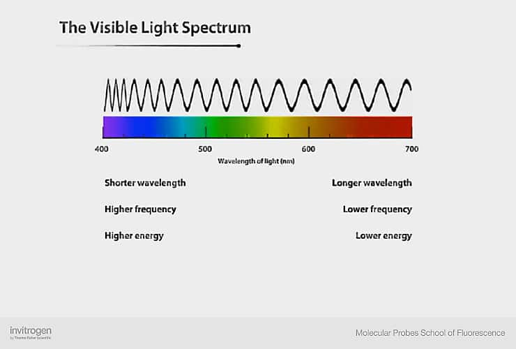 the light spectrum and its relationship with fluorescence thermo