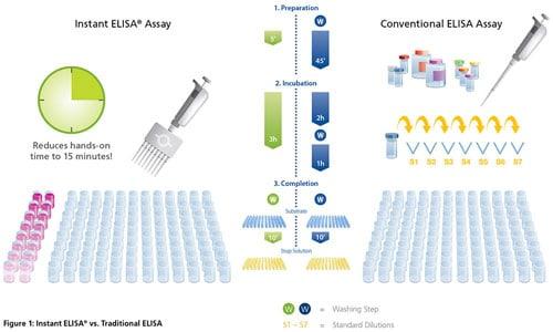 overview of elisa