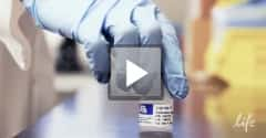 See how polymer for Sanger sequencing is manufactured