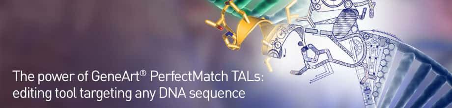 Genome Editing Tool Targeting any DNA sequence