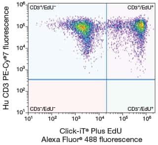 Dual-parameter scatter plot illustrating fluorescence from Jurkat cells labeled with the Click-iT® Plus EdU Alexa Fluor® 488 Flow Cytometry Assay Kit and PE-Cy®7 anti–Hu CD3 antibody