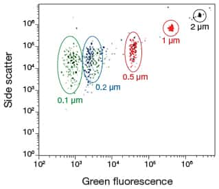 Scatter plot showing separation of differently sized microspheres from the Flow Cytometry Sub-Micron Particle Size Reference Kit