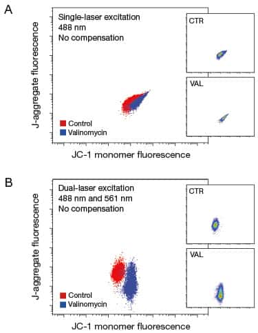 2-panel uncompensated multilaser analysis of JC-1 fluorescence after mitochondrial membrane depolarization in U937 cells