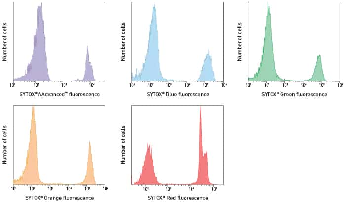 5-panel graph showing cell viability of Jurkat cells labeled with each of the SYTOX® Dead Cell stains