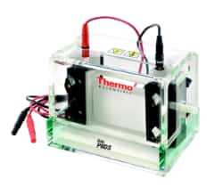 Owl™ Dual-Gel Vertical Electrophoresis Systems