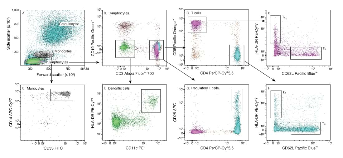Flow Cytometry Panel Design The Basics Thermo Fisher
