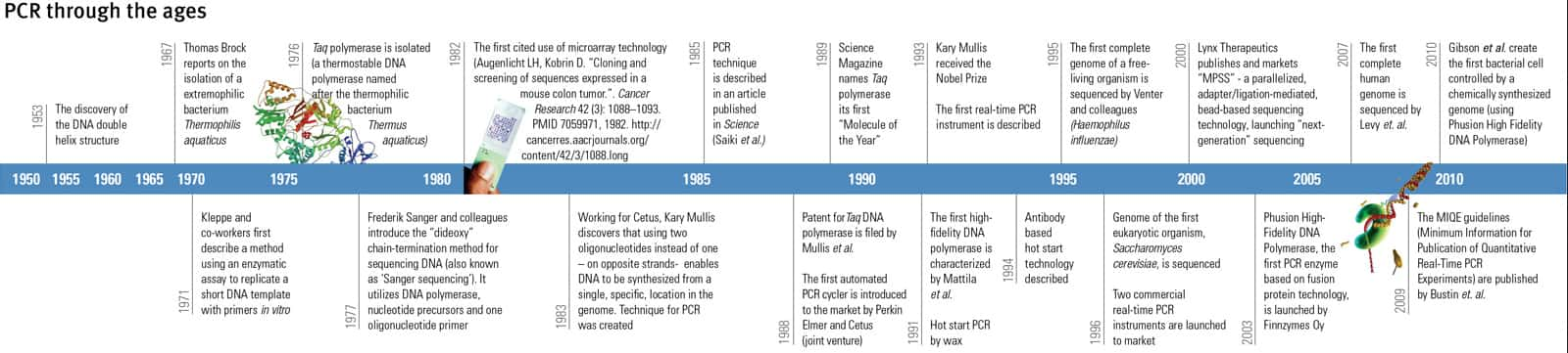 The History Of Pcr Thermo Fisher Scientific Us