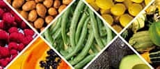 Fruit and Vegetable Allergens