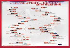 The Evolution of Genome Engineering poster