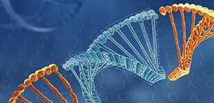 cell-engineering-genome-editing-image