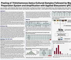 Pooling of Tritrichomonas foetus Cultured Samples Followed by MagMAX™ Sample Preparation System and Amplification with Applied Biosystems qPCR Reagents