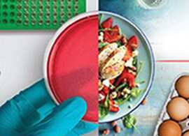 Microbiology Poultry Solutions