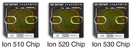 scale-chips-image-230x195