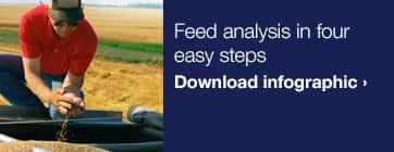 Infographic - Feed Analysis in four easy steps