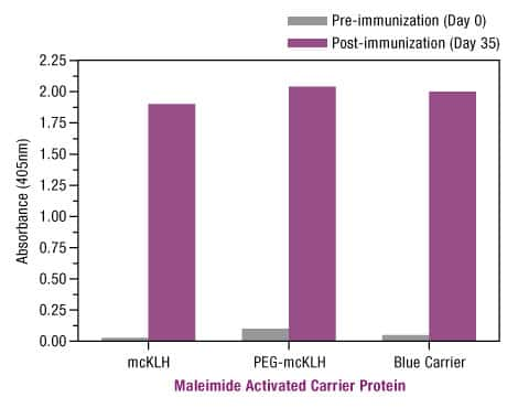 Figure 5. Sulfhydryl conjugation to maleimide-activated Thermo Scientific Imject Carrier Proteins elicits similarly strong immune responses to generate high levels of antigen-specific antibody