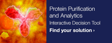 Protein Purification and Analytics
