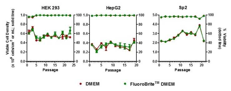Cell lines cultured in FluoroBrite DMEM and standard DMEM display